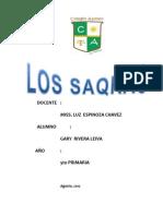 Saqras Del Cuzco Final