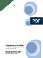 Seminarii Management Strategic - MG