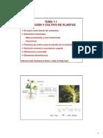 Nutricion y Cultivo de Plantas Alumnos