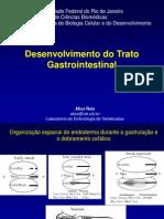 Desenvolvimento do trato gastrointestinal Farmácia PCI-II