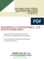 Sustentabilidad Fuerte y Debil