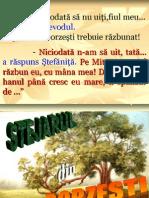 Stejarul Din Borzesti[1] Prezentare Muzeu