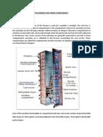 PPT.docx