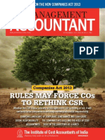The Management Accountant-November, 2013