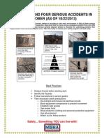 MNMFatalAlert10222013.pdf