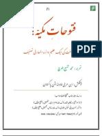 Futūhāt al-Makkiyya (article) فتوحات مکیہ ایک عظیم دائرة المعارفی تصنیف