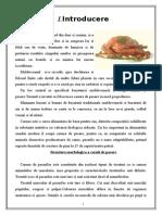 TPAP PROIECT Carnea de Pasare