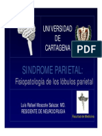 Sindrome Parietal