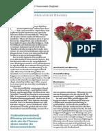 Bloomy in het Financieele Dagblad