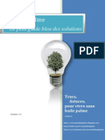 Guide Bleu Des Solutions - Vivresanshuiledepalme