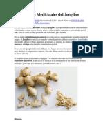 Propiedades Medicinales del Jengibre.docx