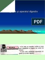 Lectie6 Digestia Iaparatuldigestiv.respiratiasiaparatulrespirator