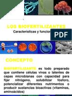 11. Los Biofertilizantes