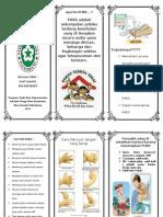 Leaflet Phbs2 PDF