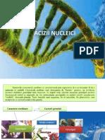 acizi nucleici (1)
