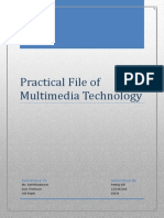 Practical File of Multimedia Technology