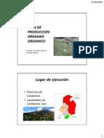 Plan de Produccion Oregano Cdve en Blanco