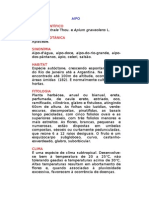 Aipo - Apium australe Thou. - Ervas Medicinais – Ficha Completa Ilustrada