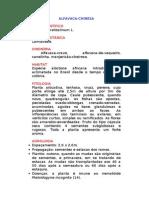 Alfacaca-chinesa - Ocimum gratissimum L. - Ervas Medicinais – Ficha Completa Ilustrada