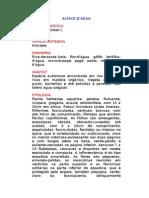 Alface-d'água - Pistia stratiotes L. - Ervas Medicinais – Ficha Completa Ilustrada