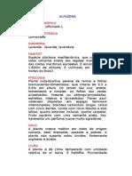 Alfazema - Lavandula officinalis L. - Ervas Medicinais – Ficha Completa Ilustrada