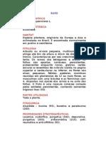 Buxo - Buxus sempervirens L. - Ervas Medicinais – Ficha Completa Ilustrada