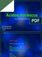 1-ACIDOS NUCLEICOS