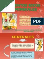 minerales.2