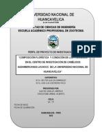 PERFIL DE PROYECTO DE INVESTIGACION - VIII - A - Composición florística  y condición de los pajonales en el centro de investigación de camélidos