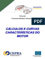 Cálculos e curvas características do motor