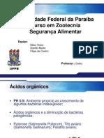 SEMINÁRIO_ÁCIDOS ORGÂNICOS