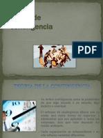 Tema 5 Caracter Contingencial