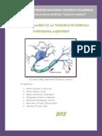 Bases moleculares de la transmisión nerviosa
