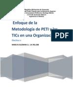 ENSAYO PETI.docx