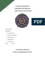 Laporan Prak Mirko - Virologi Perhitungan Angka Kuman.docx