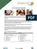 Business Intensive Programme