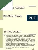 Cereales Andino- Diapositivas.ppt