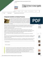 Imigração brasileira na Guiana Francesa _ Brasileiros na França