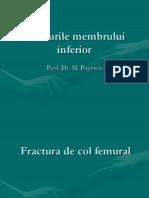 Fracturile Membr. Inferior