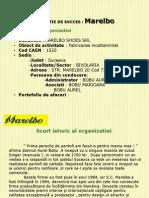 Organizatie de Succes -Marelbo