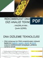 DNA DİZİ ANALİZİ TEKNOLOJİSİ