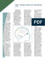 El+Cerebro+Aprende