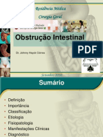 64178561 Obstrucao Intestinal