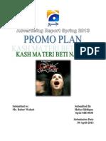 Promo Plan