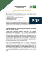 Estandares Curriculares (1)