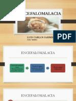 Encefalomalacia Final Final 44