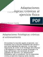 Adaptaciones_fisiológicas