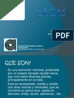 lacas2-1219326941012257-8
