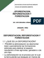 forestación y reforestación