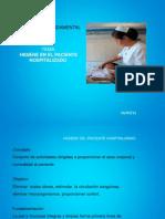 hiegienedelpacientehospitalizado-130318114834-phpapp02